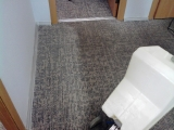 Химчистка коврового покрытия однодисковой машиной